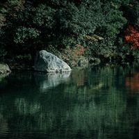 水面に映る色付き始めた木々の写真