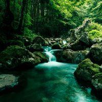 白賀渓谷(しらがけいこく)の写真