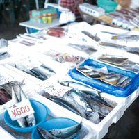 朝市で売られている鮮魚の写真