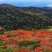 紅葉はじめの山の写真