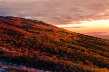 夕陽に照らされる鳥海山の写真