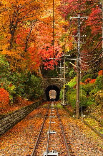 高尾山の紅葉の写真
