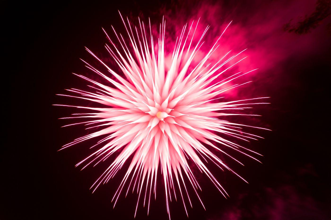 ピントリングを回して撮影したイソギンチャク花火の写真