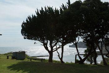 いすみ市小浜城跡からの景観の写真