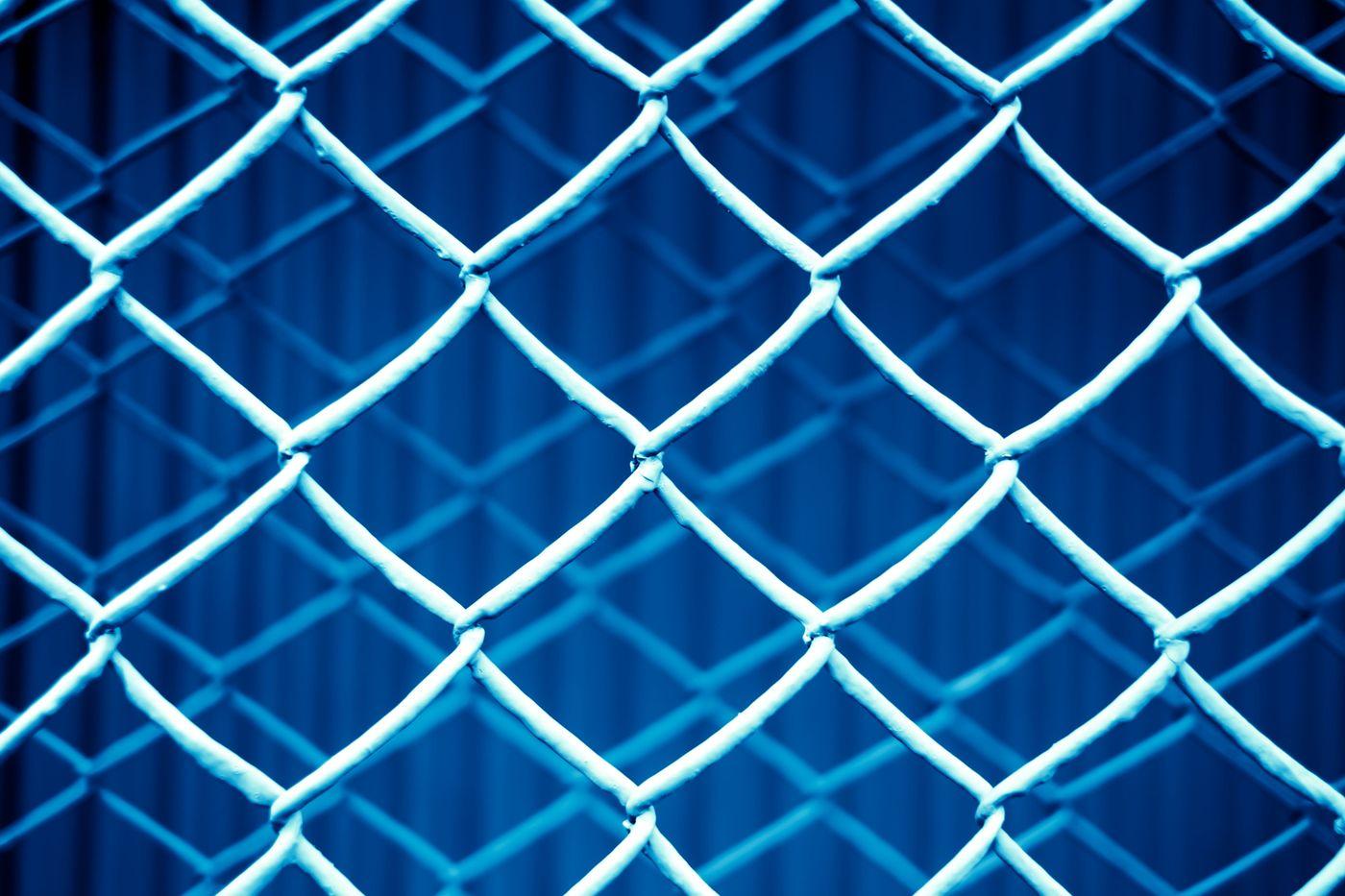 重なった金網フェンス(青)の写真
