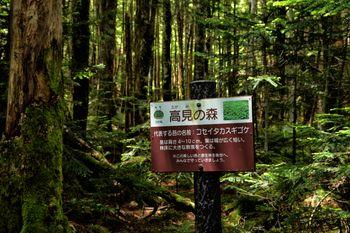 高見の森の看板の写真