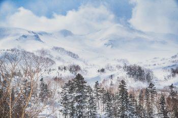 幻想的な冬の乗鞍高原(北アルプス)の写真