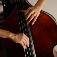 ウッドベースを弾くプロベーシストの手元の写真