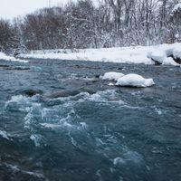 雪の中の美瑛川の写真