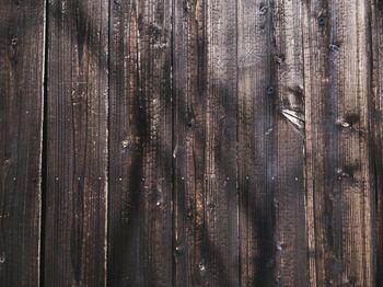 焼杉板の塀(テクスチャ)の写真