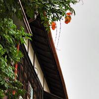 木造のアパートと雨どいの写真