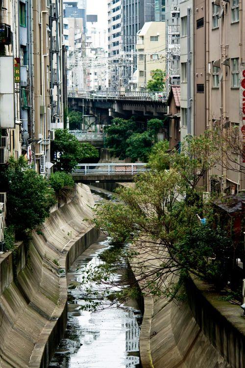 渋谷川と街並みの写真