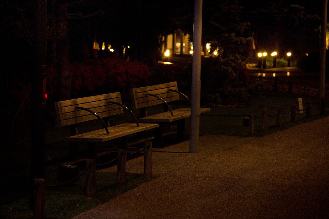 夜間のベンチの写真