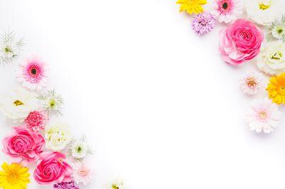 背景デザインに使いやすいお花のフレームの写真