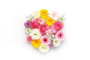 お花のラウンドの写真