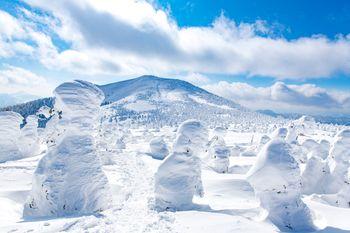 樹氷と西大嶺(ニシダイテン)の写真