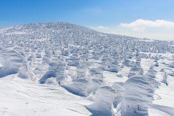 西吾妻山のスノーモンスターの写真