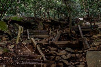 薄暗い筑波山登山道の写真