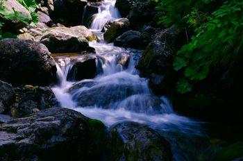 遠野山地を流れる渓流の写真