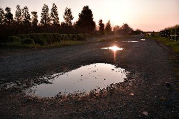 朝日を反射する砂利の水たまりの写真