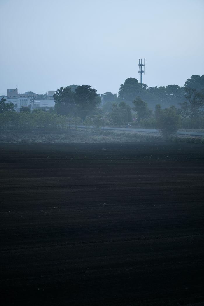 朝霧の奥に立つ鉄塔の写真