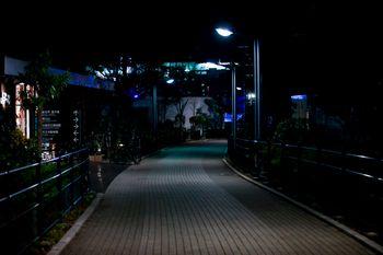深夜の歩道の写真