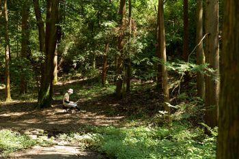 静寂な森の中で集中してコードを書く伝説のエンジニアの写真