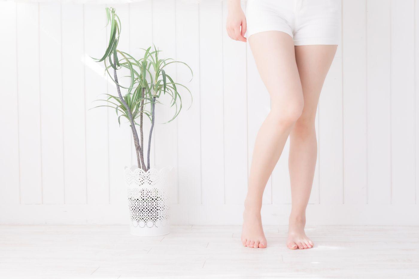 若い女性の脚の写真