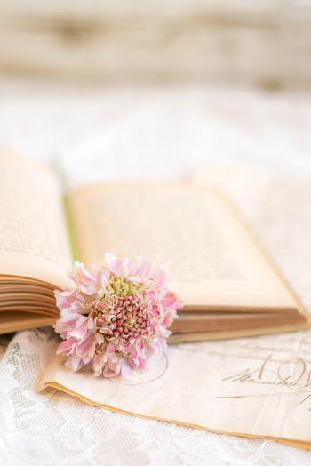 洋書に挟み込まれた花の写真