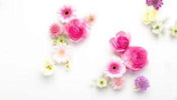 ホワイトボードの上に置かれたお花たちの写真