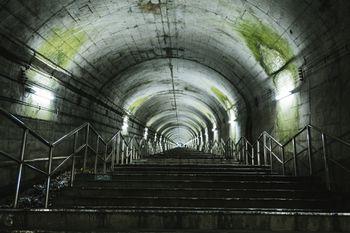トンネルの天井にこびり付いた苔(土合駅の階段)の写真