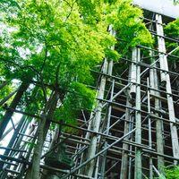 平成の大改修で工事中の清水寺の足場の写真