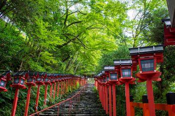 青紅葉に赤い灯篭が映える京都貴船神社入り口の石段の写真