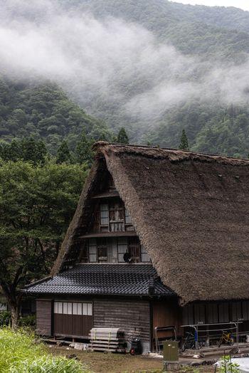 霧が出る山と菅沼(すがぬま)合掌造り集落の写真