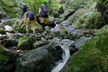 沢を歩く登山者の写真
