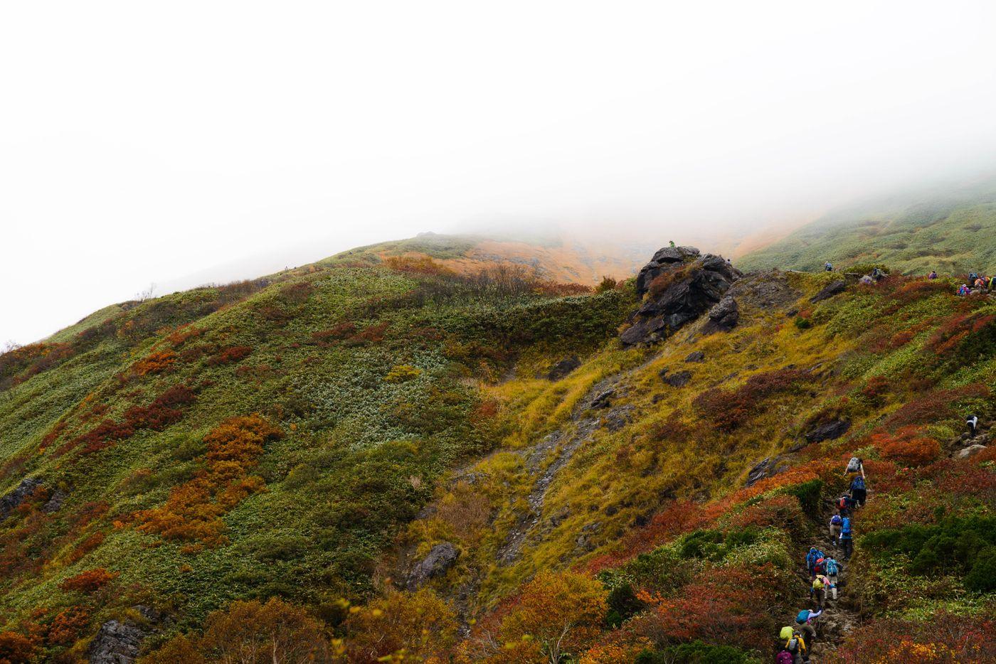 黄葉する秋の谷川岳と登山者の姿の写真